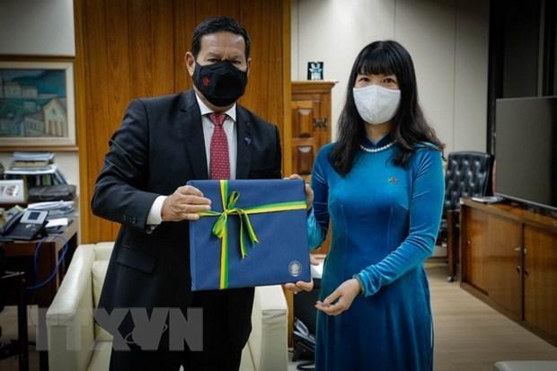 Embajadora vietnamita presenta sus cartas credenciales a canciller de Surinam hinh anh 1