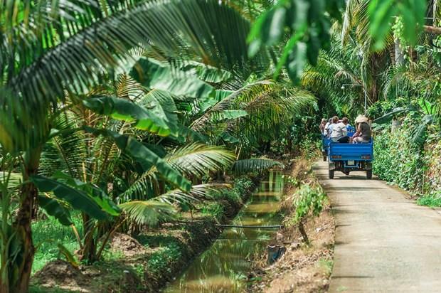 Lonely Planet presenta las siete mejores carreteras para viajar por Vietnam hinh anh 5