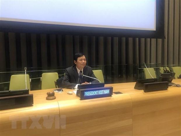Vietnam pide promover proceso politico en Libia hinh anh 1