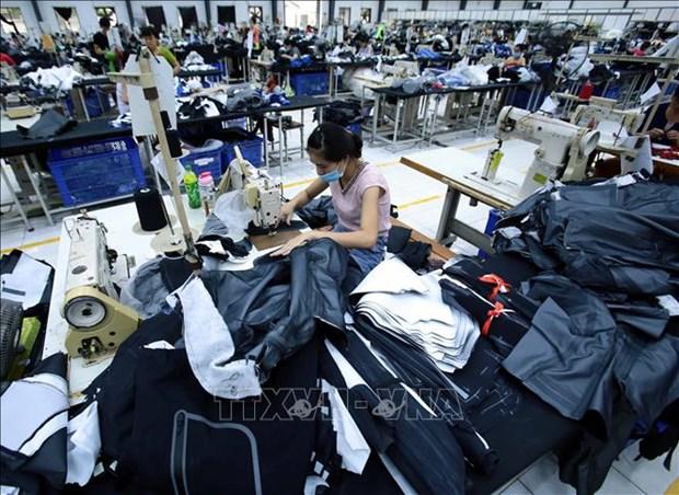 Aconsejan a empresas vietnamitas adoptar proactividad en exportaciones a la UEE hinh anh 1
