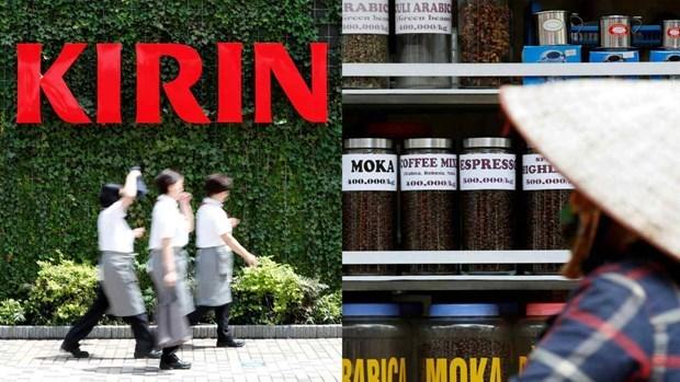 Empresa japonesa apoya a agricultores de cafe vietnamitas en produccion sostenible hinh anh 1