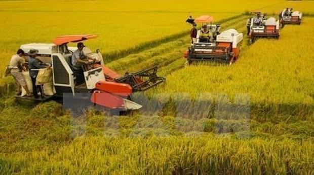 Avanza Vietnam en programa de modernizacion rural hinh anh 1