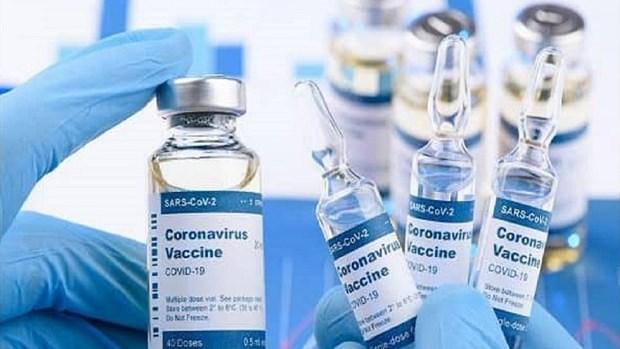 Reciben apoyo en Vietnam para el Fondo nacional de Vacunas contra el COVID-19 hinh anh 1