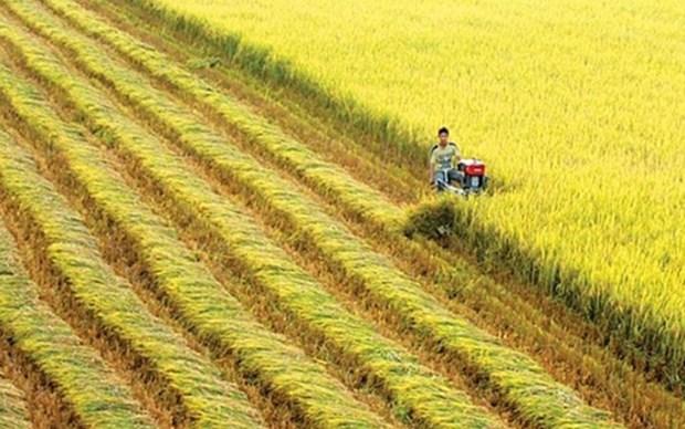 Vietnam y Suiza por impulsar la cooperacion en el desarrollo agricola hinh anh 1