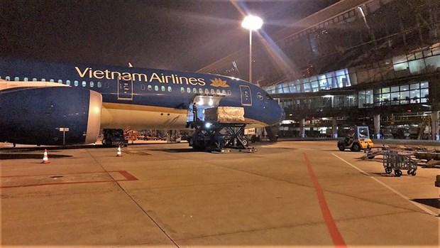 Envian casi 10 toneladas de lichi vietnamita a Japon por via aerea hinh anh 2