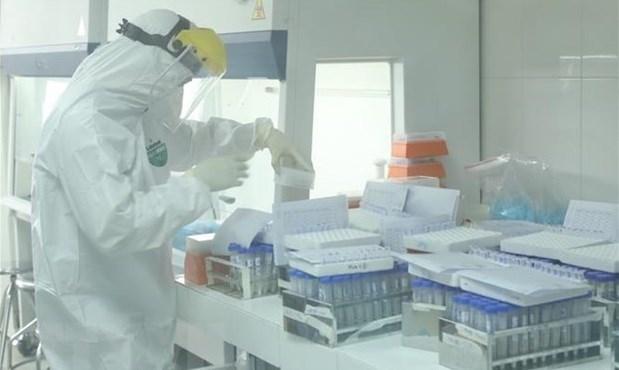 COVID-19: Otros 53 nuevos contagios en Vietnam hinh anh 1