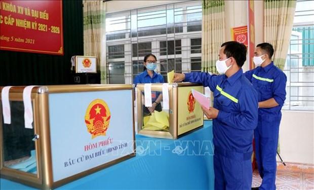 Realizaran segunda vuelta electoral en varias localidades vietnamitas hinh anh 1