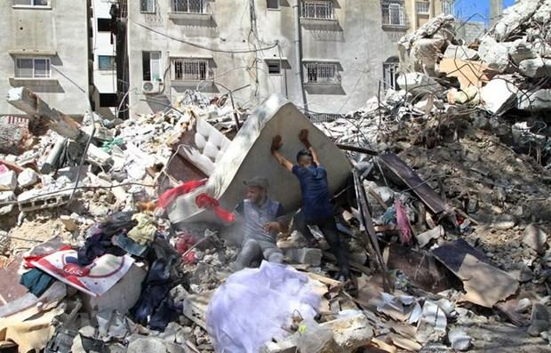 Alientan a vietnamitas tras enfrentamientos entre Israel y Palestina hinh anh 1