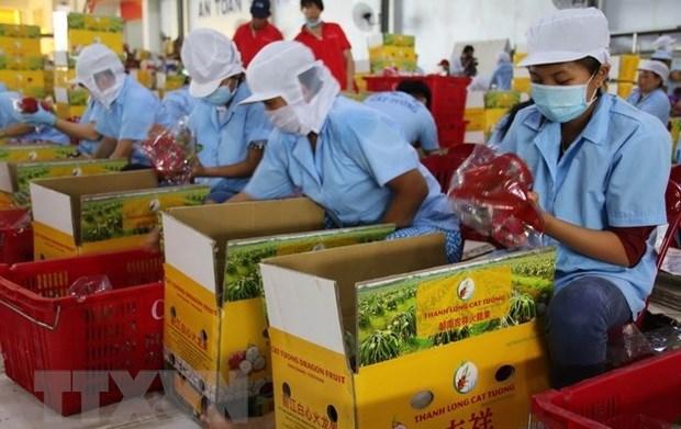 Funcionarios canadienses aprecian dinamismo de la economia vietnamita hinh anh 1