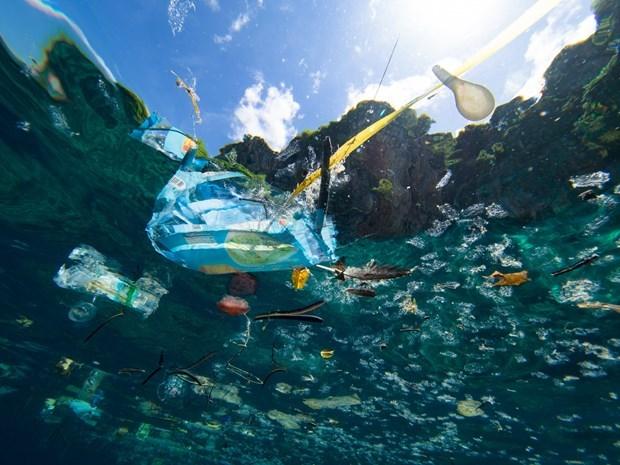 ASEAN refuerza combate contra desechos marinos hinh anh 1
