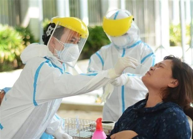 Realizan prueba aleatoria del COVID-19 a pobladores en provincia vietnamita de Ninh Thuan hinh anh 1