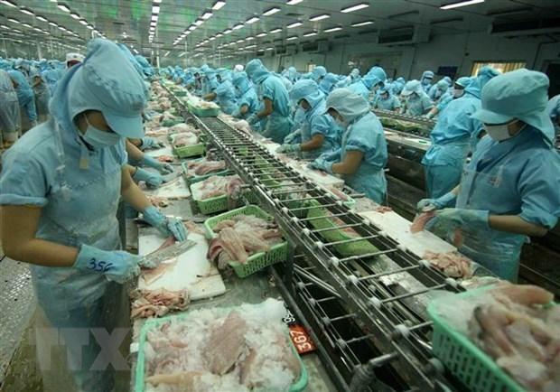 Amplian oportunidades de exportacion de productos agricolas vietnamitas a Polonia hinh anh 1