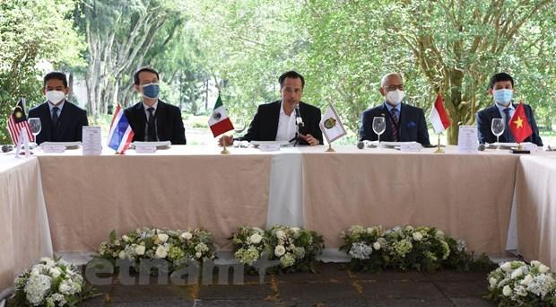 Promueve ASEAN comercio e inversion con estado mexicano de Veracruz hinh anh 1