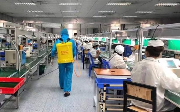 Gobierno vietnamita plantea acelerar vacunacion contra COVID-19 para trabajadores hinh anh 1