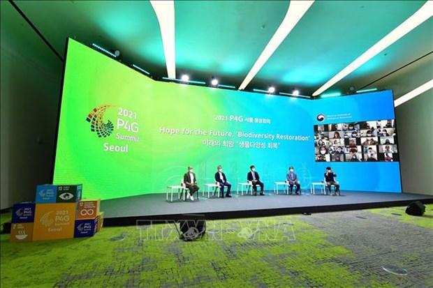 La participacion en Cumbre P4G afirma contribucion responsable de Vietnam en lucha contra el cambio climatico hinh anh 1