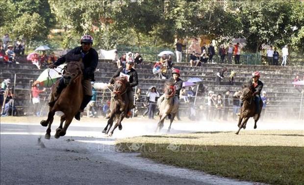 Carrera de caballos Bac Ha nombrada Patrimonio cultural intangible de Vietnam hinh anh 2