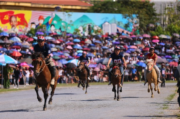 Carrera de caballos Bac Ha nombrada Patrimonio cultural intangible de Vietnam hinh anh 1