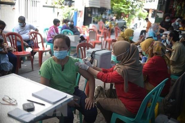Indonesia y Malasia controlan la entrada a su territorio desde varios paises hinh anh 1