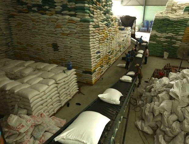 Vietnam representa la mayor cuota de importaciones de arroz de Filipinas hinh anh 1