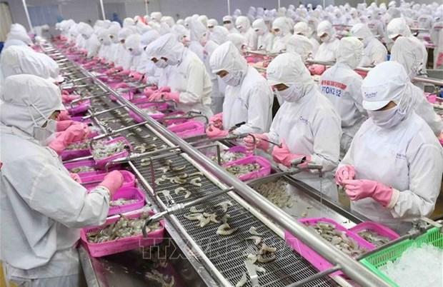 Crecen exportaciones de productos acuaticos vietnamitas entre enero y mayo hinh anh 1