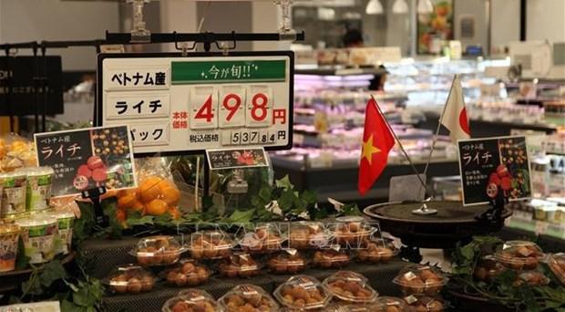 Presentan a Japon productos agricolas destacados de Vietnam hinh anh 1
