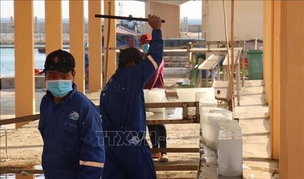 Servicios logisticos pesqueros en archipielago vietnamita de Truong Sa hinh anh 2
