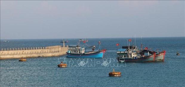 Servicios logisticos pesqueros en archipielago vietnamita de Truong Sa hinh anh 3