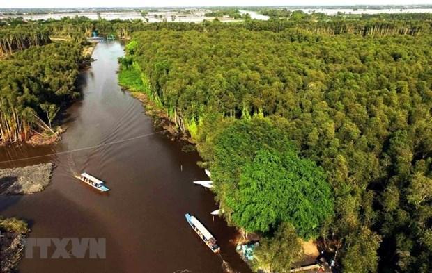 Vietnam trabaja por conservar los ecosistemas del Delta del rio Mekong hinh anh 1