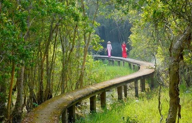Vietnam trabaja por conservar los ecosistemas del Delta del rio Mekong hinh anh 3