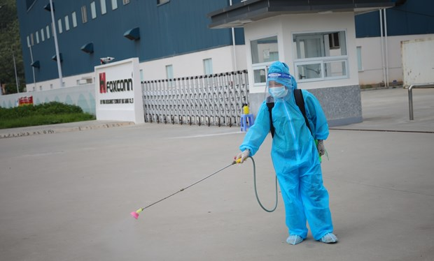 Reporta Vietnam otros 52 casos de COVID-19 hinh anh 1