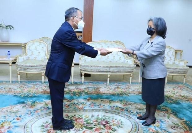 Vietnam y Etiopia acuerdan promover relaciones bilaterales hinh anh 1