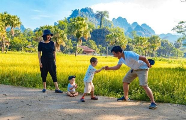 Celebraran actividades culturales en ocasion del Dia de la Familia de Vietnam hinh anh 1