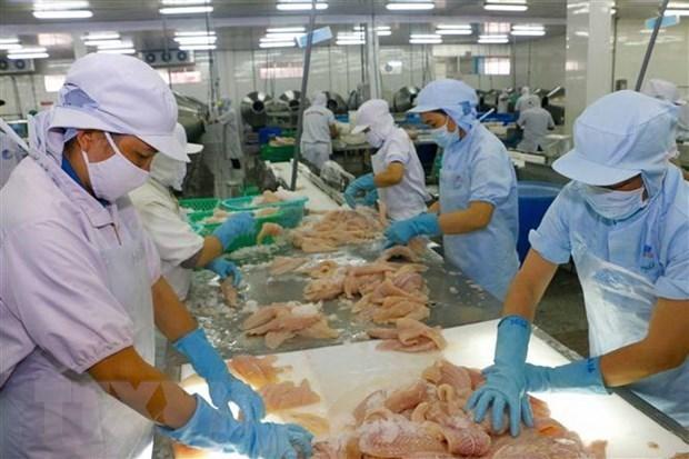 Crecen exportaciones de productos pesqueros de Vietnam en primeros cinco meses de 2021 hinh anh 1