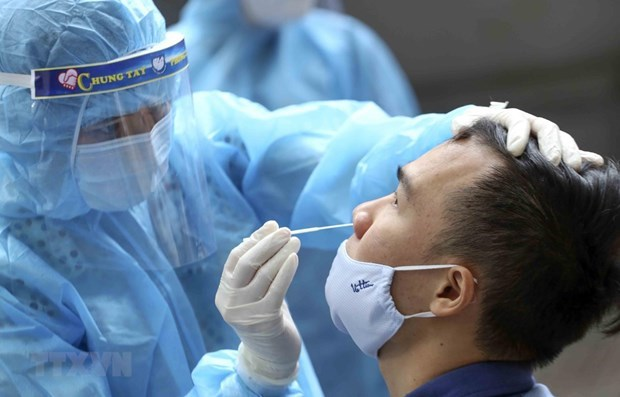 Vietnamitas en el extranjero apoyan la lucha contra el COVID-19 hinh anh 1