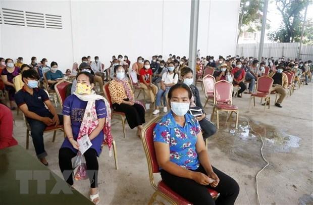 Camboya experimenta aumento de casos nuevos del COVID-19 hinh anh 1