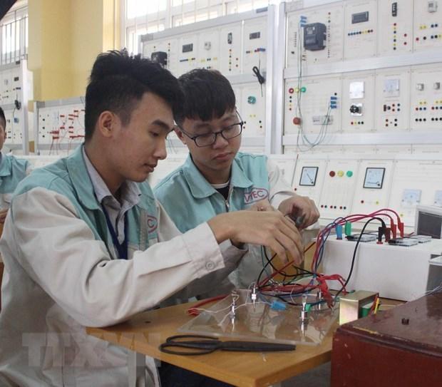 Provincia vietnamita impulsa formacion profesional para empleados rurales hinh anh 1