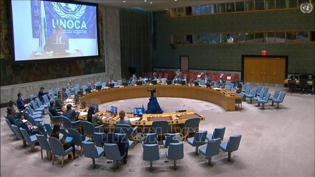 Vietnam destaca importancia del dialogo en lucha contra el terrorismo en Africa Central hinh anh 1