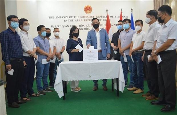 Vietnamita en Egipto apoya combate contra COVID-19 en pais de origen hinh anh 1