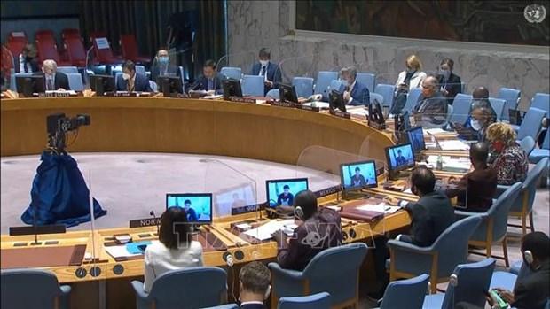 Vietnam pide reforzar la proteccion a los civiles en Sudan hinh anh 1