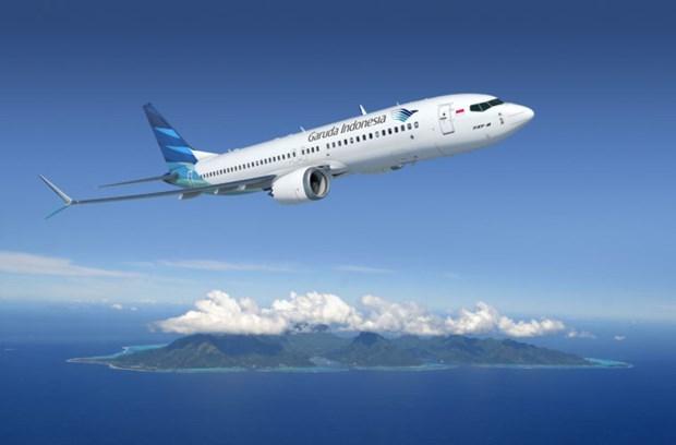 Aerolinea nacional de Indonesia detiene dos tercios de su flota hinh anh 1