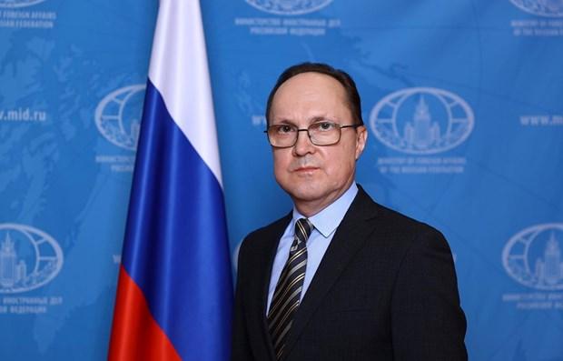 Relaciones Vietnam-Rusia con brillantes perspectivas, confia embajador hinh anh 1