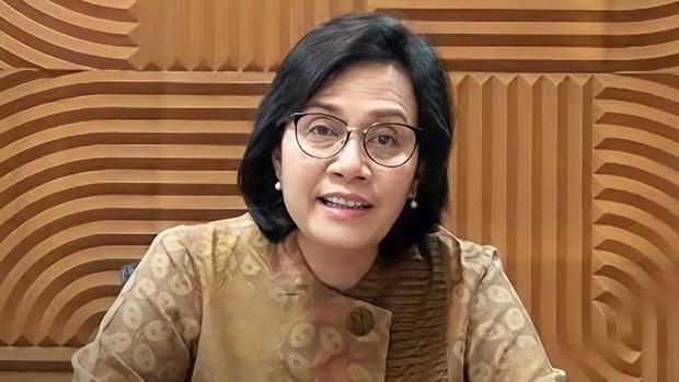 Indonesia por cumplir compromisos sobre respuesta a cambio climatico hinh anh 1
