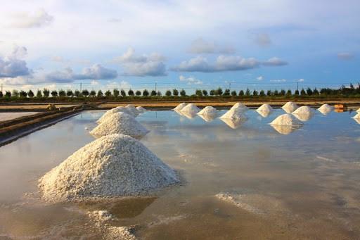 Vietnam busca desarrollo sostenible de la industria salinera de Can Gio hinh anh 1