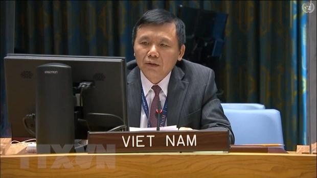 Vietnam llama a fortalecer la reconciliacion nacional en Mali hinh anh 1