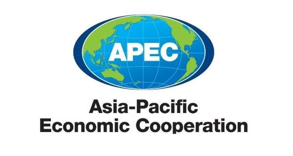 APEC debate reformas estructurales para la recuperacion economica en pos del COVID-19 hinh anh 1