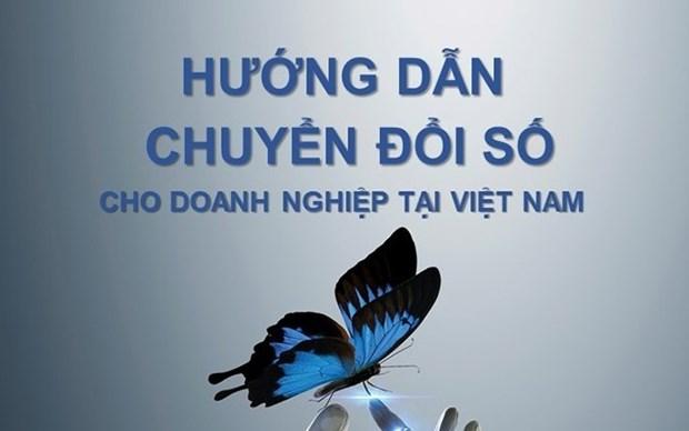 Vietnam publica manual sobre transformacion digital para empresas hinh anh 1