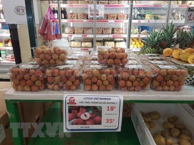 Lichi vietnamita recibe alta valoracion de consumidores franceses hinh anh 1
