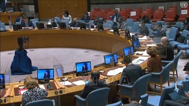 Consejo de Seguridad discute impacto del COVID-19 en lucha contra el terrorismo hinh anh 1