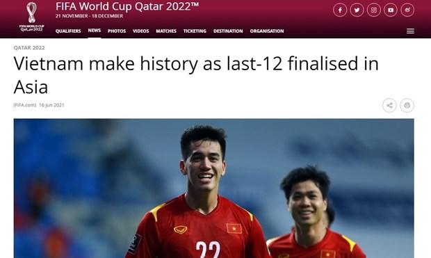 FIFA impresionada por logros historicos de seleccion nacional vietnamita hinh anh 1