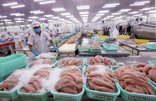 Industria de procesamiento impulsa exportaciones agrosilvicolas y acuicolas de Vietnam hinh anh 1